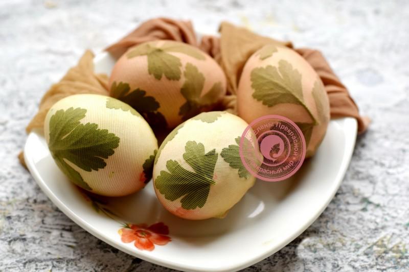 покраска яиц луковой шелухой рецепт в домашних условиях