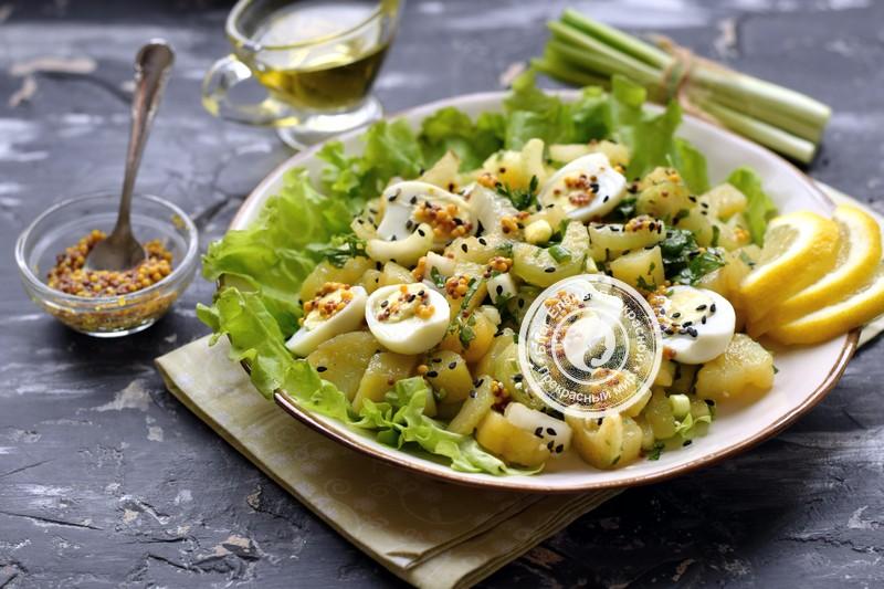 Картофельный салат с сельдереем и перепелиными яйцами на праздничный стол: рецепт в домашних условиях