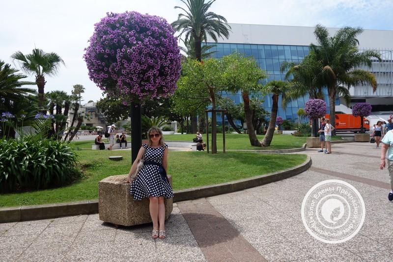 На площади Каннского фестиваля