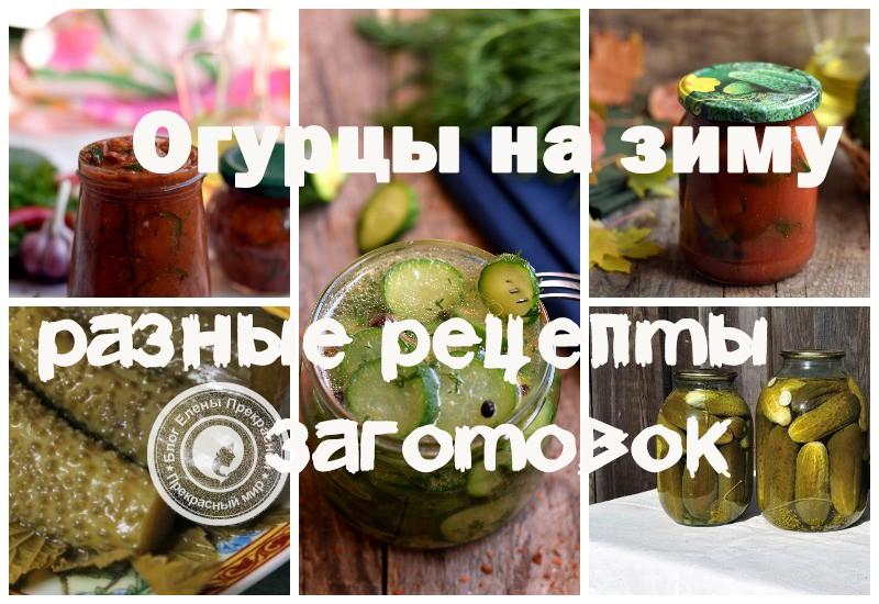 Огурцы на зиму рецепты