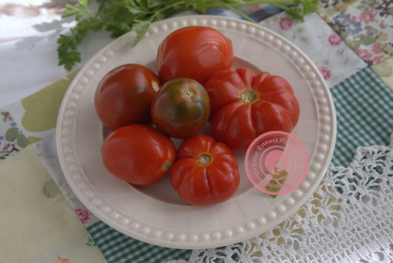 Острые соленые помидоры на зиму