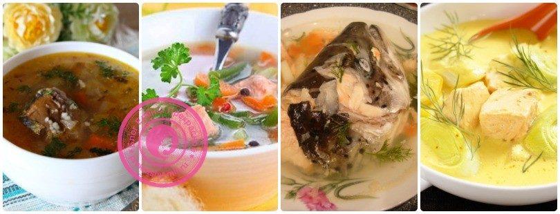 Рыбный суп: рецепты в домашних условиях с фото и видео