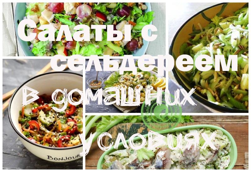 Салат с сельдереем: рецепты в домашних условиях с фото