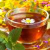 Миниатюра к статье 10 лучших сборов чая для иммунитета в народной медицине