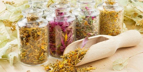 травы для очищения восстановления печени