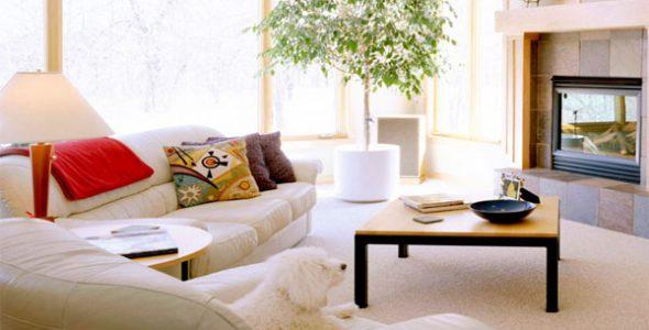 Миниатюра к статье Простые правила фен шуй для дома: как гармонизировать и правильно оформить комнаты