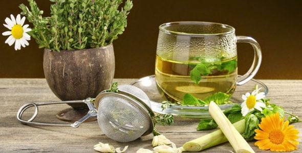 Миниатюра к статье Аюрведическая фитотерапия— лечение лекарственными травами