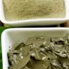 Миниатюра к статье Применение зеленой глины в косметологии: полезна и для кожи и для волос